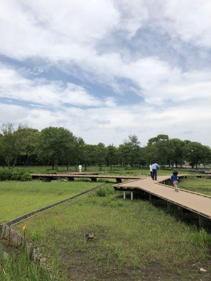 舎人公園 橋