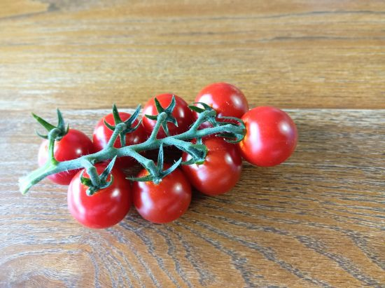 ミニトマト 栽培
